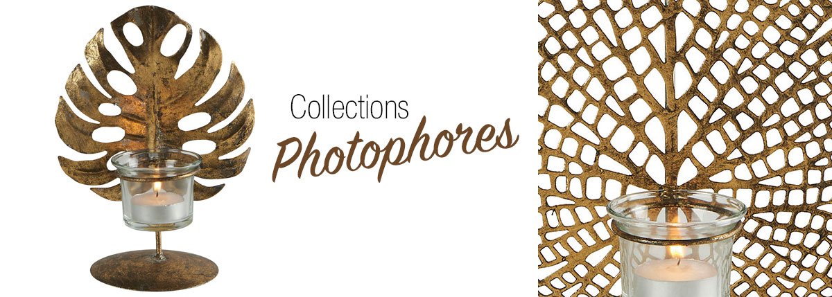 Collections PHOTOPHORES